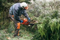 Jardinero profesional que usa la motosierra Imagenes de archivo