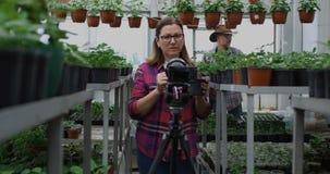 Jardinero que presenta la planta a la cámara almacen de metraje de vídeo