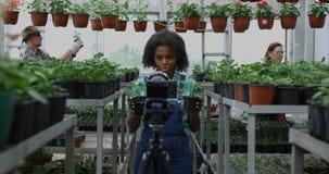 Jardinero que presenta la planta a la c?mara almacen de metraje de vídeo