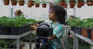 Jardinero que presenta la planta a la c?mara