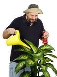 Jardinero que riega la flor grande del verde amarillo Foto de archivo