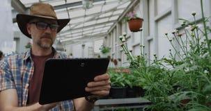 Jardinero que toma la foto en invernadero