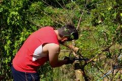 Jardinero que trabaja en el huerto Otoño que cultiva un huerto, concepto de la agricultura biológica La agricultura biológica es  Foto de archivo libre de regalías