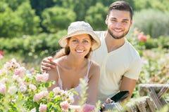 Jardineros de los pares que plantan las plantas Foto de archivo libre de regalías