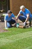 Jardineros de paisaje que ponen el césped para el nuevo césped Foto de archivo
