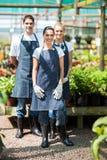 Jardineros del grupo Imagen de archivo libre de regalías