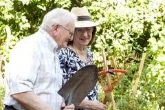 Jardineros mayores Fotografía de archivo