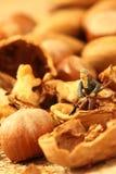 Jardineros miniatura nuts Imagen de archivo libre de regalías