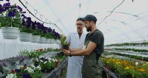 Jardineros que caminan en invernadero almacen de video
