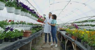 Jardineros que examinan la flor almacen de metraje de vídeo