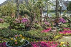 Jardines ajardinados chinos artificiales - un poema de las flores, piedras Foto de archivo