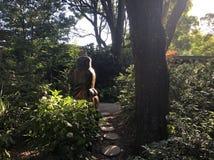 Jardines altísimos de Dandenong del soporte fotos de archivo