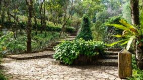 Jardines asiáticos en Tailandia fotos de archivo