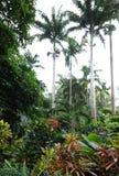 Jardines Barbados del ` s de Hunte fotos de archivo libres de regalías