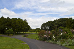 Jardines botánicos de Auckland Foto de archivo libre de regalías