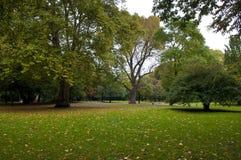Jardines botánicos de Colonia Fotografía de archivo libre de regalías