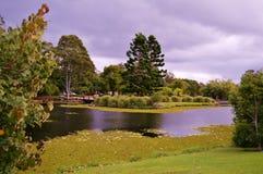 Jardines botánicos de Gold Coast Imagenes de archivo