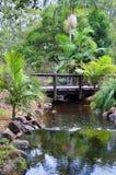 Jardines botánicos de Gold Coast Fotos de archivo
