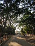Jardines botánicos de Lalbagh en Bangalore imágenes de archivo libres de regalías
