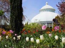 Jardines botánicos de NY imagenes de archivo