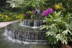 Jardines botánicos de Singapur Foto de archivo libre de regalías