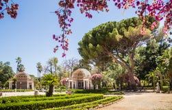 Jardines botánicos Orto Botanico, Palermo, Sicilia de Palermo Foto de archivo libre de regalías