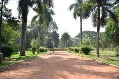 Jardines bot?nicos de Lalbagh, Bangalore, Karnataka imagen de archivo