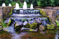 Jardines botánicos de Gold Coast Fotos de archivo libres de regalías
