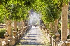 Jardines de Alfabia, Mallorca Fotografía de archivo libre de regalías