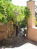 Jardines de Alhambra Imagenes de archivo