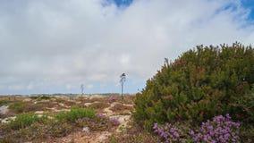 Jardines de Buskett, Siggiewi, Malta metrajes