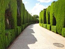 Jardines de Generalife en Alhambra Palace Foto de archivo libre de regalías