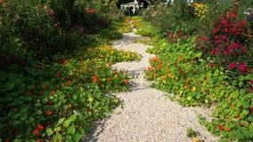 Jardines de Giverny almacen de video
