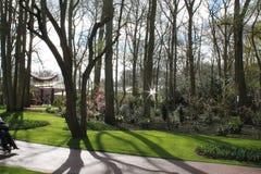 Jardines de Keukenhof en los Países Bajos Imagen de archivo libre de regalías