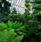 Jardines de Kew Foto de archivo