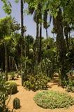 Jardines de Majorelle Fotografía de archivo libre de regalías