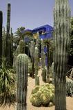 Jardines de Majorelle Foto de archivo