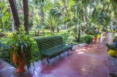 Jardines de Majorelle en Marrakesh Foto de archivo libre de regalías
