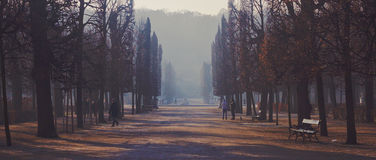 Jardines de Schonbrunn foto de archivo