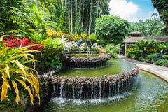 Jardines de Singapur Fotos de archivo libres de regalías