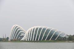 Jardines de Singapur por las bóvedas de la flor de la bahía Foto de archivo