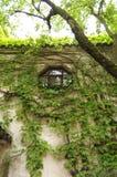 Jardines de Suzhou Imagen de archivo libre de regalías