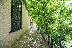 Jardines del Alcazar, Sevilla Fotos de archivo libres de regalías