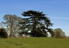 Jardines del castillo de Astley Fotografía de archivo libre de regalías