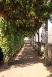 Jardines del castillo de Villandry Foto de archivo libre de regalías