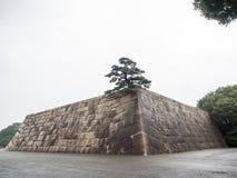 Jardines del este del palacio imperial, Tokio, Japón fotografía de archivo