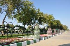 Jardines del paraíso de Al Ain Fotos de archivo