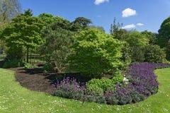 Jardines del parque en a todo color imagen de archivo libre de regalías