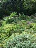 Jardines en la casa fea, tÅ· hyll foto de archivo