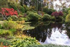Jardines fantásticos en la isla de Vancouver Imágenes de archivo libres de regalías